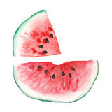 Set of watermelon Royalty Free Stock Images