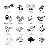 Set of web icon set - spices and herbs Stock Photo