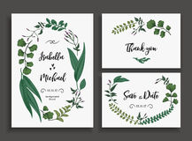 Set of wedding cards with leaves and herbs. Set of wedding cards with leaves, herbs and flowers. Wedding invitation, save the date, thank you card. Vector Royalty Free Stock Photography