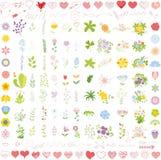 Set of wedding graphic set- wreath,vector Stock Image