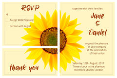 Set of wedding invitation card, sunflower on the background Royalty Free Stock Photo