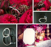 Set of wedding rings Stock Images