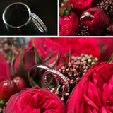 Set of wedding rings Stock Photo