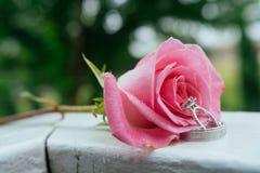 Set of wedding rings in rose taken closeup with water drops Royalty Free Stock Photos