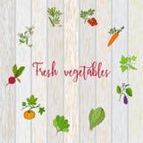 Set wektor etykietki z ręki rysującymi warzywami Zdjęcia Stock