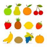 Set wektorowa owoc Zdjęcie Stock