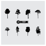 Set wektorowe drzewne sylwetki Fotografia Royalty Free