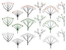 Set wektorowi różni typ kwiatostan. Ilustracji