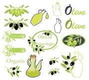 Set wektory na oliwa z oliwek temacie Fotografia Royalty Free
