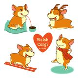 Set of welsh corgi character illustrations in different activities. Isolated on white background vector illustration