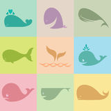 Set of  whale icons Royalty Free Stock Image