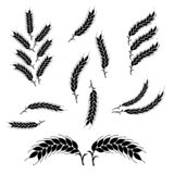 Set Wheat Ears Icons and Logo. Organic wheat, bread agriculture. vector illustration