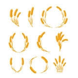 Set of Wheat Ears Vector Concepts in Flat Design. Royalty Free Stock Photo