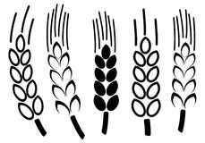 Set of wheat icons,  Royalty Free Stock Photos