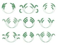 Set wheaten wianki na białym tle wektor Fotografia Royalty Free