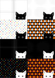 Set White and Black Cat Background Royalty Free Stock Images