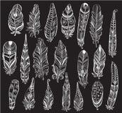 Set of white Feathers on black Stock Photos