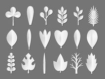 Set of white Paper Flower and tree leaves isolated on gray background. Vector eps 10 format. Royalty Free Stock Photos