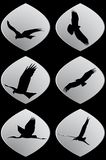 Set of white paper stickers. Silhouettes of flying birds vector illustration