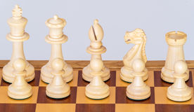 A set of white pieces on chessboard Stock Images