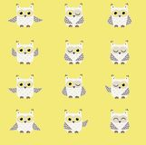 Set of white polar owls. On yellow background vector illustration