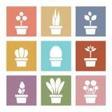Set Of White Pot Plants Symbol Stock Images
