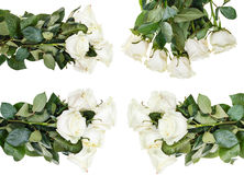 Set of white rose bouquets isolated Royalty Free Stock Photography