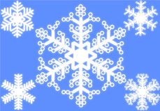Set of white snowflakes Stock Image