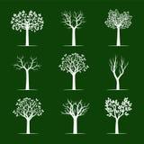 Set white Trees on green background. Vector Illustration Stock Photo