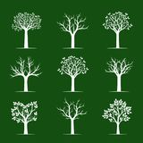 Set white Trees on green background. Vector Illustration. Nature and decoration Royalty Free Stock Photography