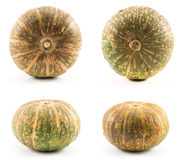 Set of whole pumpkin isolated. Stock Photos
