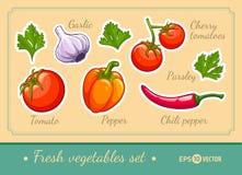 Set świeżych warzyw czereśniowego pomidoru pieprzu czosnku pietruszka i chili Zdjęcie Stock
