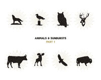 Set of wild animal figures and shapes with sunbursts  on white background. Black silhouettes wolf, deer, moose Stock Photo
