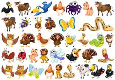 Set of wild animal. Illustration stock illustration