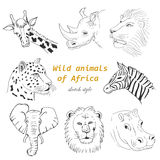 Set of wild animals of Africa in sketch style Stock Photos
