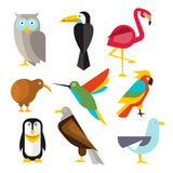 Set of Wild Arctic, Forest and Tropical Birds in Royalty Free Stock Photo