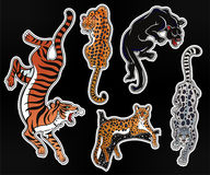 Set of wild Cat flash tattoo patches or elements. Stock Photography