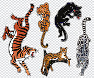 Set of wild Cat flash tattoo patches or elements. Set of wild Cat designs. Classic flash tattoo style patches or elements. Traditional stickers, comic pins. Pop Stock Photography