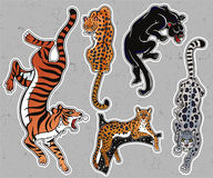 Set of wild Cat flash tattoo patches or elements. Royalty Free Stock Photography