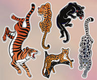 Set of wild Cat flash tattoo patches or elements. Set of wild Cat designs. Classic flash tattoo style patches or elements. Traditional stickers, comic pins. Pop Royalty Free Stock Images
