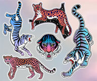 Set of wild Cat flash tattoo patches or elements. Royalty Free Stock Image
