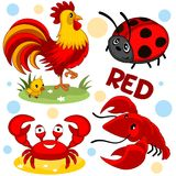 Wild animals are red. A set of wild and domestic animals and insects of red color for children and design. A picture of a ladybird, a rooster with chicken, crab vector illustration