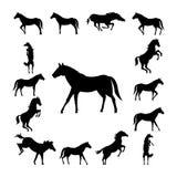 Set wild horse silhouette Stock Photo