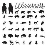 Set of wilderness vector royalty free stock photo