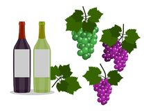 Set of Wine bottles and grapes  in the white background. Flat Design Illustration Royalty Free Stock Image