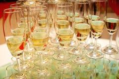Set of wine glasses Stock Photography