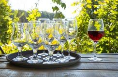 Set of wine glasses Royalty Free Stock Image