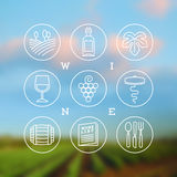 Set of wine and winemaking icons and emblems Stock Images