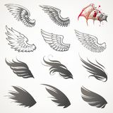 Set of wings. Set of twelve different wings Stock Photography
