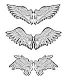 Set of Wings. Computer illustration, isolated on the white Stock Photography